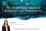 7 Core Issues in Adoption and Permanency: A Guide to Promoting Understanding and Healing