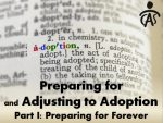 Preparing for and Adjusting to Adoption – Part 1